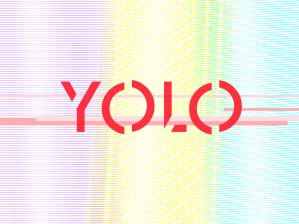 yolo2